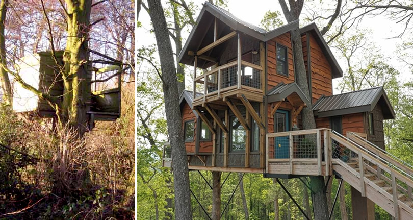 Tree House in Asheville