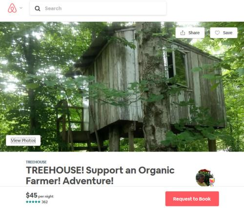 Treehouse on Airbnb - Tree House in Asheville – Project Small House