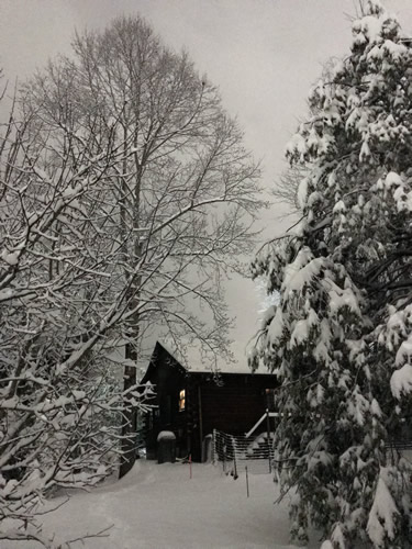 Back of the cabin - Snow at Meadowbrook Log Cabin – Project Small House