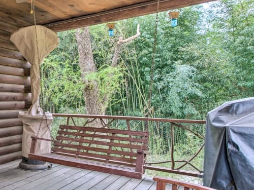 The bamboo from the front porch of the log cabin