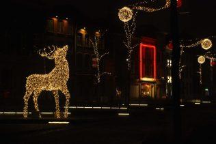 Hert kerstverlichting op de Korenmarkt in Mechelen