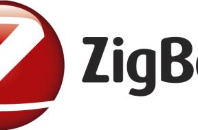 Zig Bee Logo