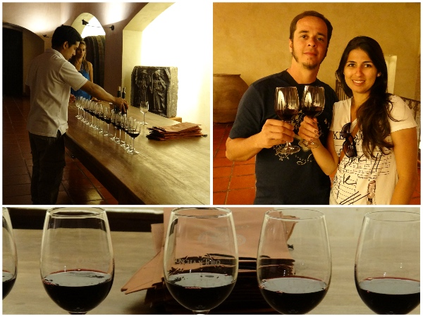 Degustacao vinho tinto Concha y Toro
