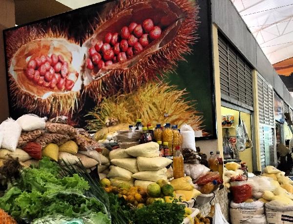 Mercado Central PVH