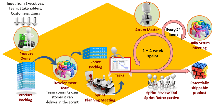 The PMP Agile Mindset Principles on a Project PMP