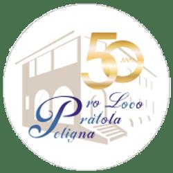 Logo 50°