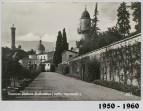 1950-1960 Viale delle cedraie