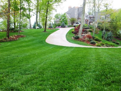 Landscaped and Manicured Lawn
