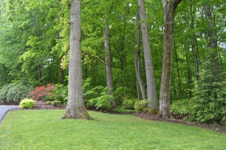 Landscaped Area.