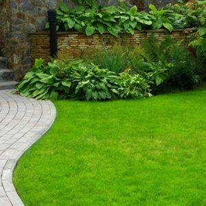 want greener grass