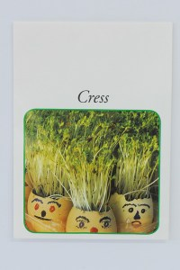 Promoflowers Cress Seed Stock Packet