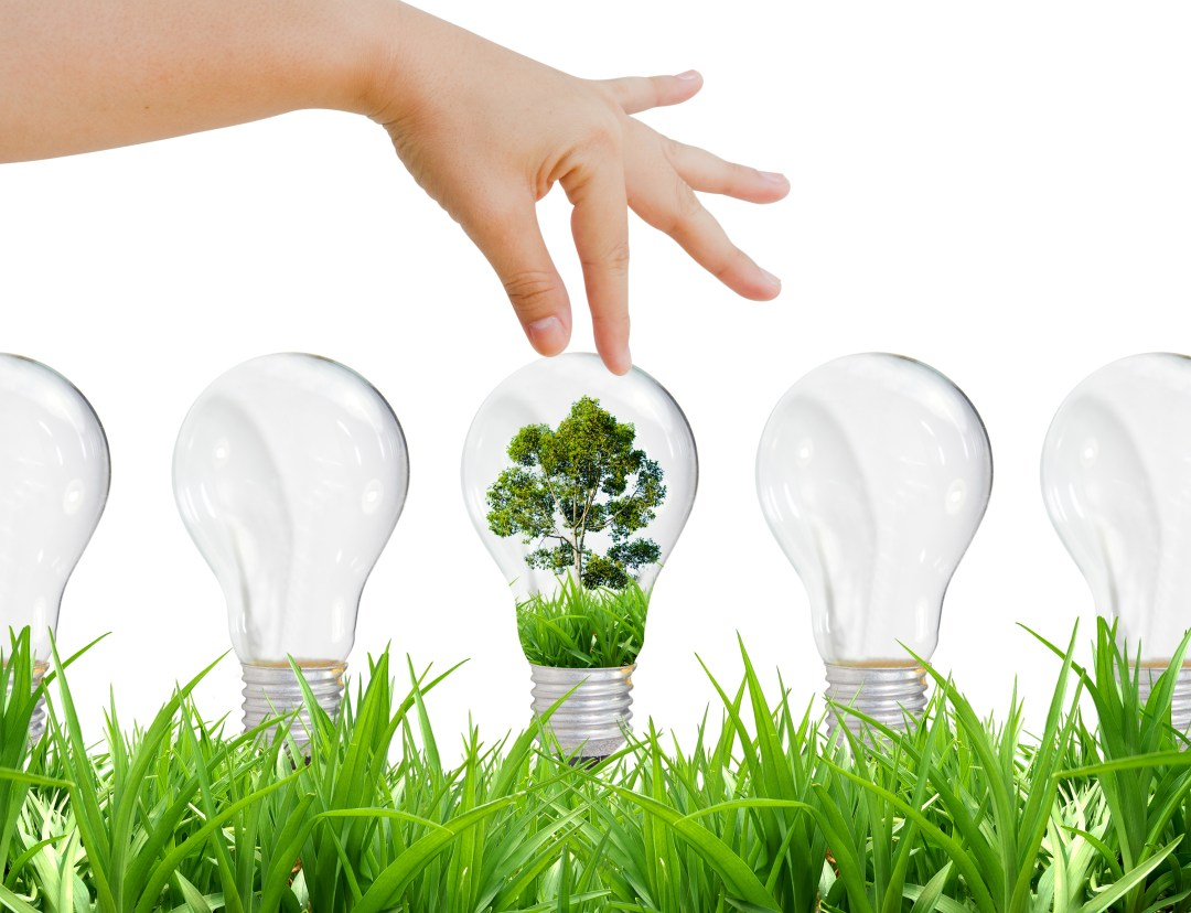 Green energy_shutterstock_LIB