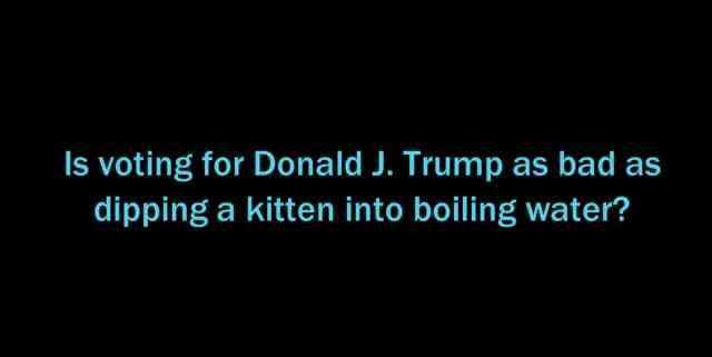 Boiling Kittens?