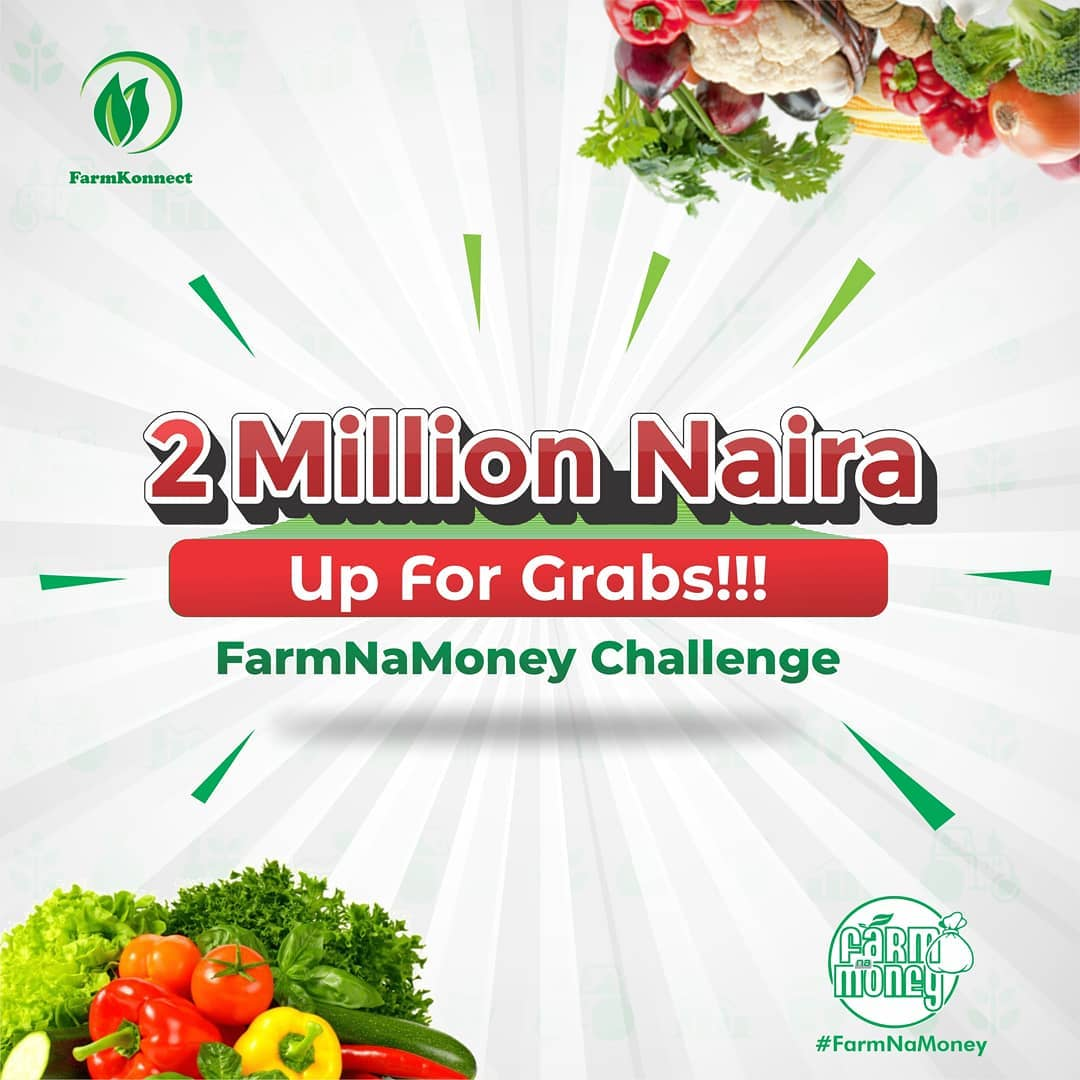 N2Million For Grabs in FarmKonnect Farm Na Money Challenge.
