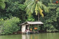 sri lanka tour itinerary - Madu River Boat Ride through Mangroves - View 9- refreshments