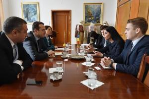 Ana Birchall - delegatie georgia