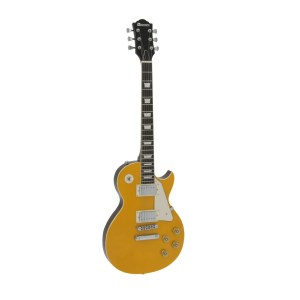 DiMavery LP-800 goldtop