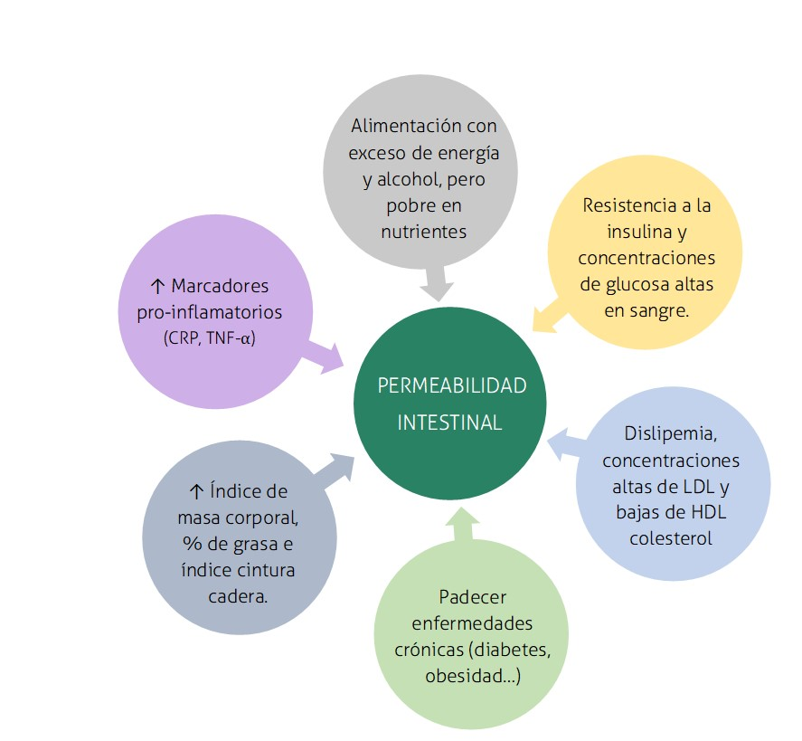 Factors de riesgo_Permeabilidad intestinal