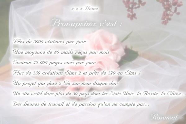 pronupsims chiffres blog mariage