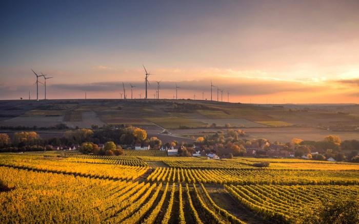 Το όραμα της Ε.Ε. για τις αγροτικές περιοχές
