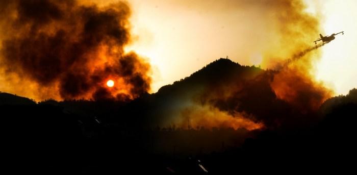 Εμπρησμοί δασών: Ποινικές ευθύνες και ποινές για τους δράστες