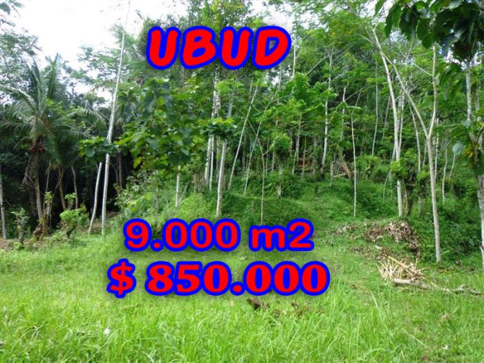 Spectacular Property in Bali for sale, land for sale in Ubud Pejeng – TJUB239