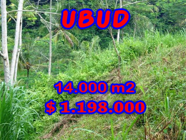 Property in Bali for sale, Fantastic view in Ubud Pejeng – TJUB238