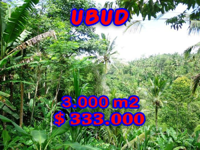Land for sale in Ubud Bali 3.000 m2 in Ubud Tegalalang