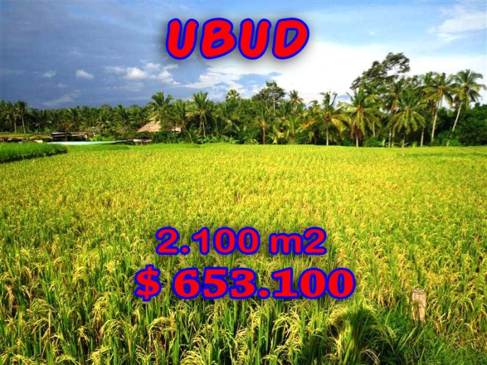 Land for sale in Ubud 2,100 sqm with mountain and rice fields view