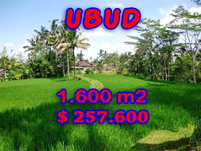 Land for sale in Ubud Bali 15.000 m2 with close to Ubud Center
