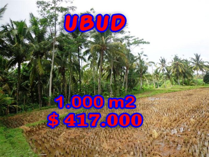Attractive Property for sale in Bali, land for sale in Ubud  – TJUB236