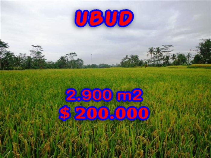Exceptional Property in Bali, Land for sale in Ubud Bali – TJUB244