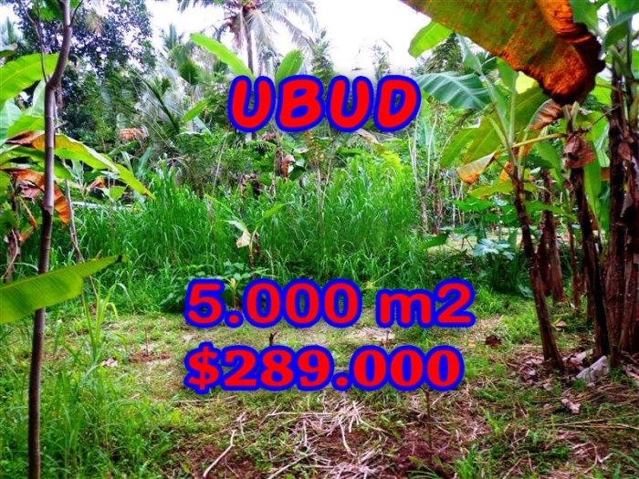 Attractive Property for sale in Bali, land for sale in Ubud  – TJUB256