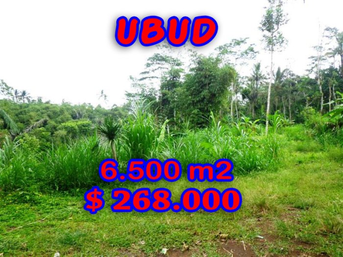Magnificent Property in Bali for sale, land in Ubud Bali for sale – TJUB241