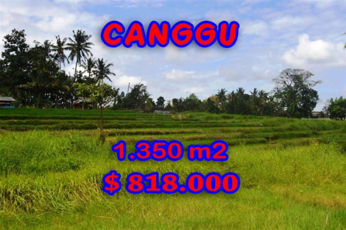 Magnificent Property for sale in Bali, land for sale in Canggu Bali – TJCG114
