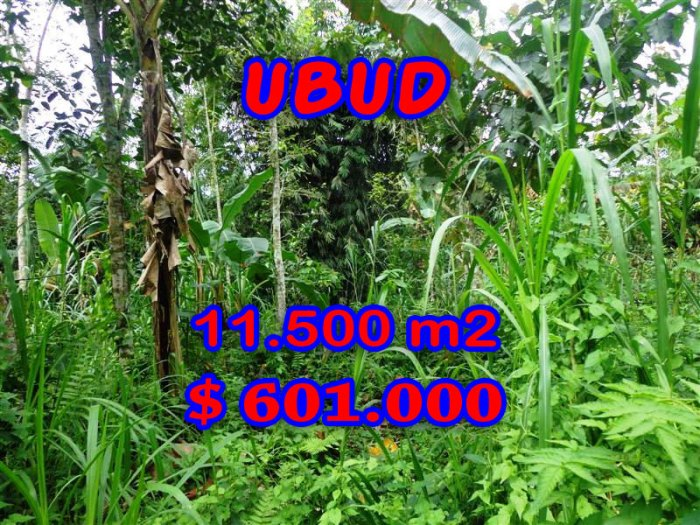 Exotic Property for sale in Bali, land for sale in Ubud Bali – TJUB260