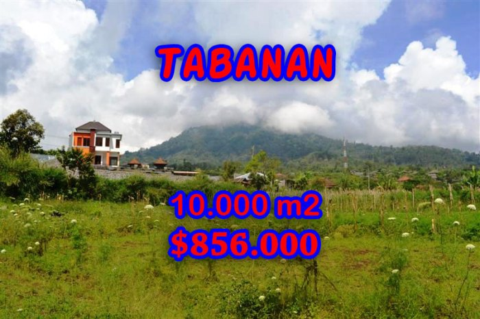 Exotic Property for sale in Bali, land for sale in Tabanan Bali – TJTB060