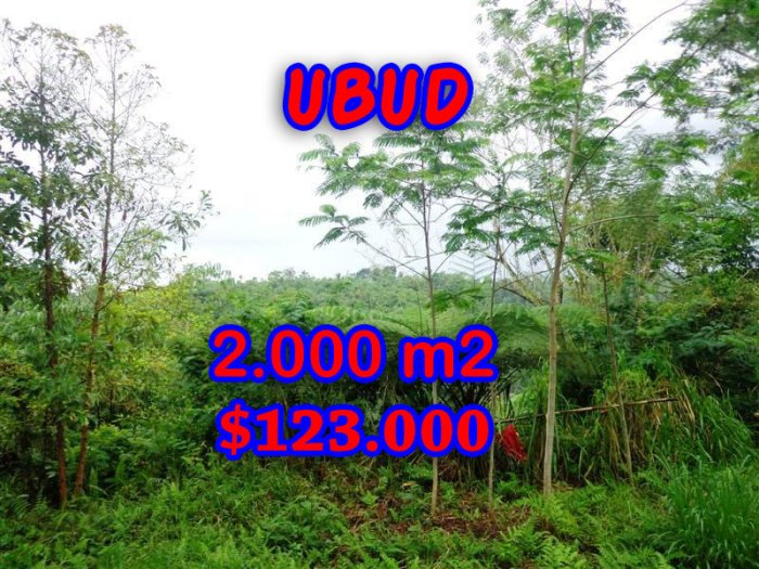 Land for sale in Bali, Amazing view in Ubud Bali – TJUB248