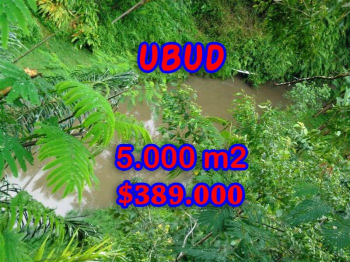 Land in Bali for sale, Wonderful view in Ubud Bali – TJUB250