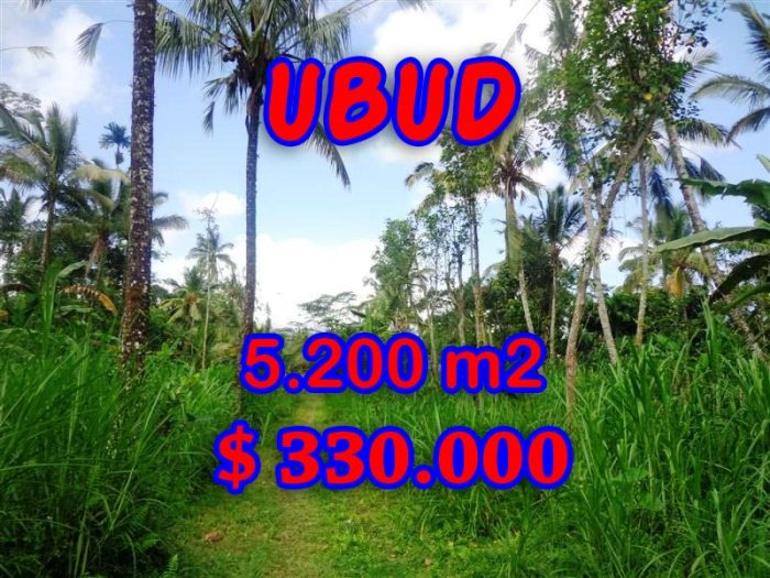 Fantastic Property for sale in Ubud Bali, land for sale in Ubud Tegalalang – TJUB296