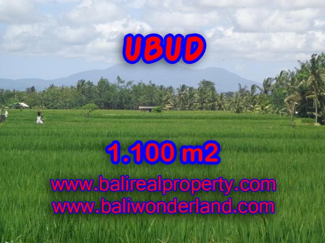 Astounding Property in Bali for sale, rice field and mountain view land in Ubud Bali – TJUB354