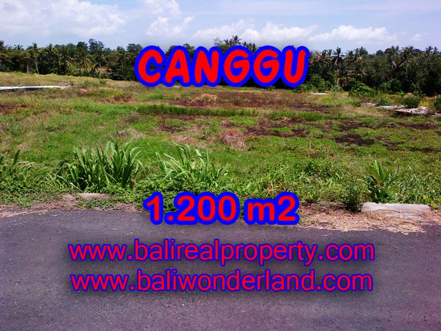 Attractive Property for sale in Bali, Canggu land for sale – TJCG126