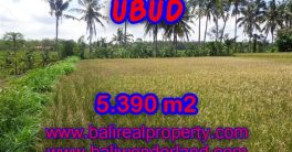 Spectacular Property for sale in Bali, land for sale in Ubud Bali – TJUB342