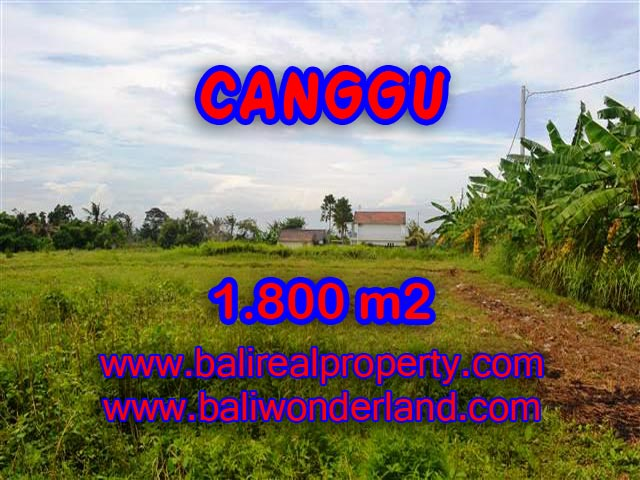 Outstanding Property in Bali for sale, land in Canggu for sale – TJCG134