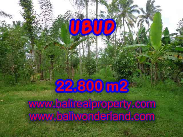 Land in Ubud for sale, Amazing view in Ubud Tegalalang Bali – TJUB409