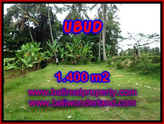 Land in Ubud for sale, Outstanding view in Ubud Tegalalang Bali – TJUB419