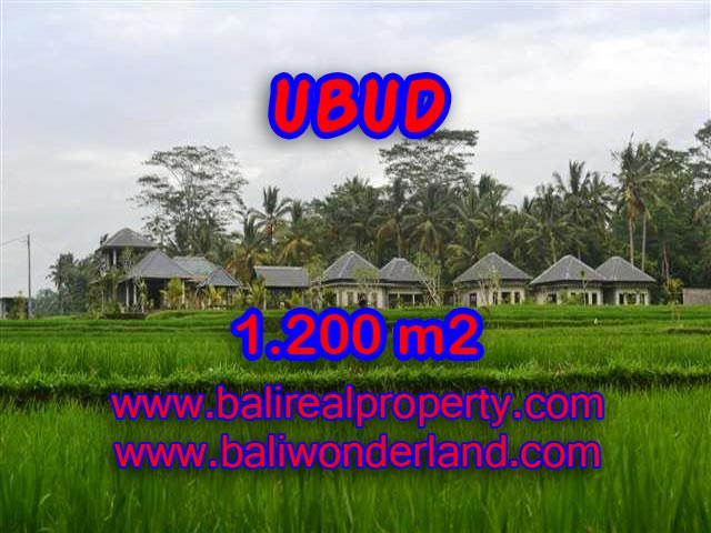 Magnificent Land for sale in Bali, beautiful rice field view in Central Ubud Bali – TJUB365