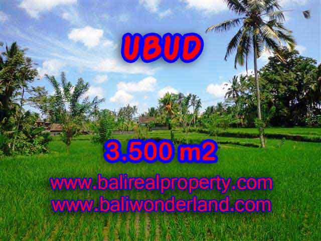 Property in Bali for sale, Astonishing land for sale in Ubud Bali – TJUB388