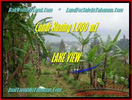 TABANAN 1.000 m2 LAND FOR SALE TJTB181