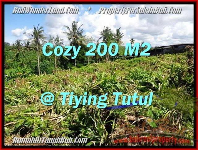 FOR SALE Exotic 200 m2 LAND IN Canggu Pererenan BALI TJCG169
